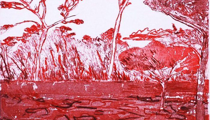 Bourke Red Landscape
